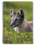 111216p030 Spiral Notebook