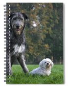 111216p250 Spiral Notebook