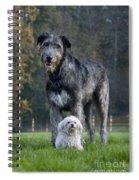 111216p251 Spiral Notebook