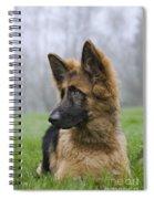 111216p333 Spiral Notebook