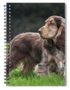 111230p047 Spiral Notebook