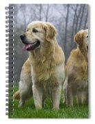 111230p057 Spiral Notebook