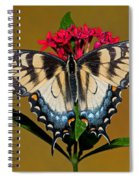 Eastern Tiger Swallowtail Butterfly Spiral Notebook