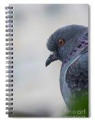 Rock Dove Spiral Notebook