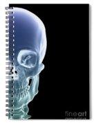 The Skull Spiral Notebook
