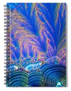 Vitamin C Crystal Spiral Notebook