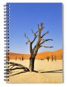 120118p018 Spiral Notebook