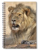 120118p040 Spiral Notebook