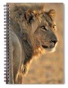 120118p093 Spiral Notebook