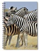 120118p097 Spiral Notebook