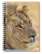 120118p103 Spiral Notebook