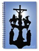 120118p366 Spiral Notebook
