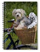 120223p264 Spiral Notebook