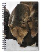 120223p304 Spiral Notebook