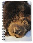 120223p308 Spiral Notebook