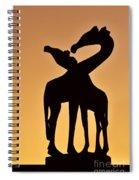 120425p283 Spiral Notebook