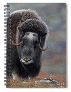 120425p337 Spiral Notebook
