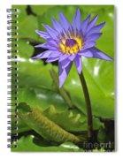 120520p014 Spiral Notebook