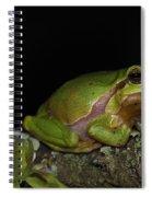 120520p059 Spiral Notebook