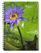 120715p199 Spiral Notebook