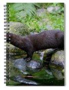 121213p013 Spiral Notebook