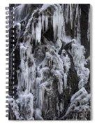 121213p146 Spiral Notebook