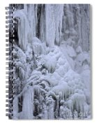 121213p153 Spiral Notebook