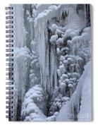 121213p157 Spiral Notebook
