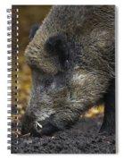 121213p269 Spiral Notebook