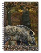 121213p284 Spiral Notebook