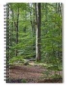 121213p305 Spiral Notebook