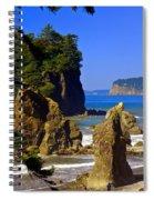 1234 Spiral Notebook