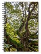 Top Half Spiral Notebook