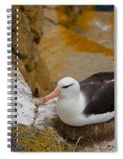 Black-browed Albatross Spiral Notebook