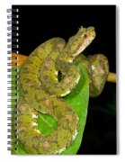 Eyelash Viper Spiral Notebook