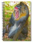 Mandrill Spiral Notebook