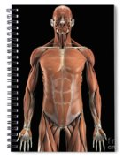 The Muscle System Spiral Notebook