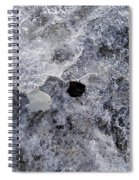 Untitled Spiral Notebook
