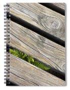 130201p005 Spiral Notebook