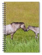 130201p027 Spiral Notebook