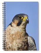 130201p040 Spiral Notebook