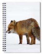 130201p056 Spiral Notebook