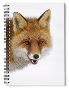 130201p058 Spiral Notebook