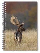 130201p288 Spiral Notebook