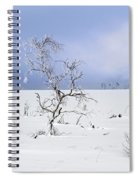 130201p330 Spiral Notebook