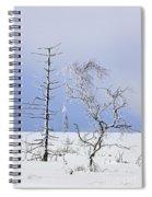 130201p331 Spiral Notebook