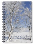 130201p335 Spiral Notebook