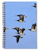 130215p251 Spiral Notebook