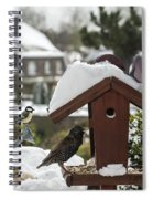 130215p292 Spiral Notebook