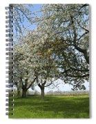 130901p216 Spiral Notebook